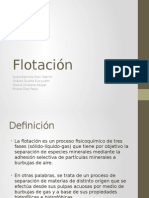 flotacionfinal-130306092354-phpapp02