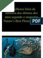As Melhores Fotos Da Natureza Dos últimos