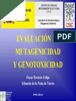 Evaluacion de Mutagenicidad