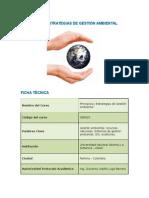 PRINCIPIOS Y ESTRATEGIAS DE GESTIÓN AMBIENTAL.docx