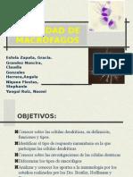 expoinmuno (1) (1)