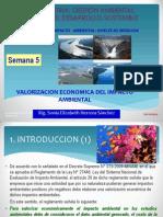 05-VALORACION ECONOMICA DEL EIA.pdf