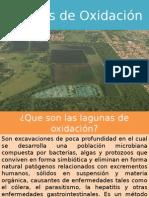 Etapas de La Laguna Oxidacion