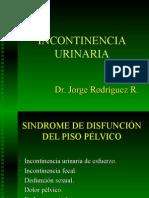 2005. Incontinencia Urinaria