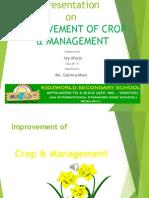 Improvement of Crop
