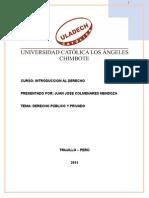 Monografia Derecho Publico y Privado