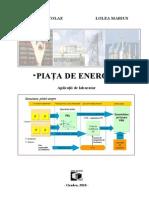PIAŢA DE ENERGIE. Aplicatii de laborator