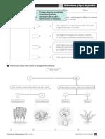 146889_5EP_libro_plantas_F123_refuerzo.pdf