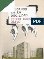 Educando en La Docilidad - Pedro Garcia Olivo