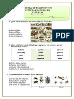 2º Básico Prueba de Diagnostico de Ciencias Naturales