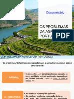 Os Problemas Da Agricultura Portuguesa