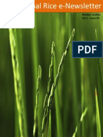 13th October ,2015 Daily Global Regional Local Rice E-Newsletter by Rice Plus Magazine