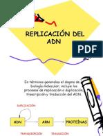 Replicación 2015