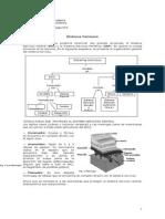 Guía Sistema Nervioso Central 3ro Lastarria