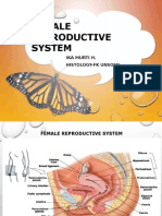 K2 - The Histology of Female Reproductive System