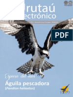 URUTAU ELECTRONICO - No 3 - MARZO 2013 - GUYRA PARAGUAY - PORTALGUARANI