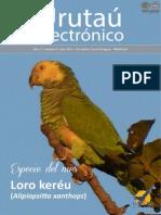 URUTAU ELECTRONICO - No 6 - JUNIO 2013 - GUYRA PARAGUAY - PORTALGUARANI