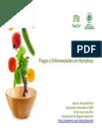 Plagas y Enfermedades-Hortalizas2011