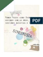 Carta Programa Sinestesia