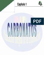 1_Carbonatos.pdf