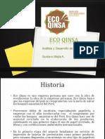 Análisis de marca Eco quinsa