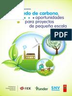 Mercado de Carbono-final[1]