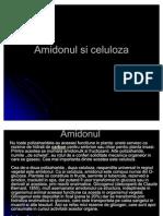 36395110-Amidonul-si-celuloza (2).pdf