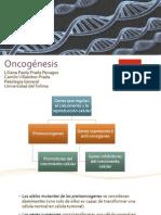 Oncogénesis.pdf