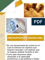 Ley Deuda Publica
