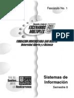 Fasciculo 1 sistema de informacion
