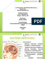 Estructura y Funcionamiento Del Sistema Nervioso, Endocrino, Neorutrasmisores