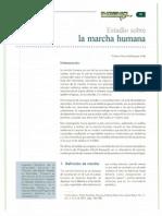 Estudio Sobre La Marcha Humana 1