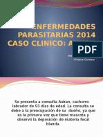 Enfermedades Parasitarias Trabajo 2014 Aukan
