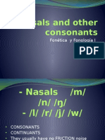 Nasals and Other Consonants