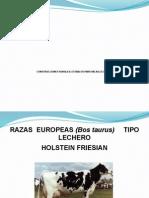 CONSTRUCCIONES RURALES; ESTABLOS PARA VACAS LECHERAS
