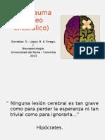 TCE (Trauma Cráneo Encefálico)