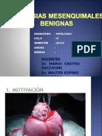 10 Lab. Patología - Neoplasias Mesenquimales Benignas