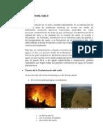 CONTAMINACIÓN DEL SUELO seminario.docx
