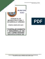 Perfil Fortalecimiento de Capacidades Mplo.corregidodoc