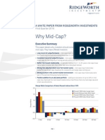 Why Mid-Cap? White Paper - Mar 2010