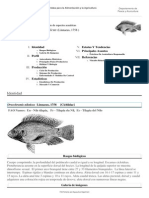 FAO Fisheries & Aquaculture - Programa de Información de Especies Acuáticas - Oreochromis Niloticus (Linnaeus, 1758 )