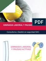 Gimnasia Laboral y Pausas Activas Congese Rev 01