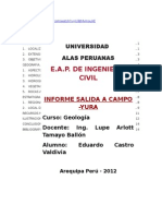 114895316-Informe-Geologia-Salida-a-Campod.docx