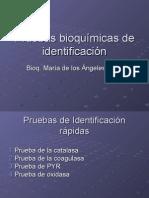 Pruebas.bioquimicas.de.Identificacion.243338506