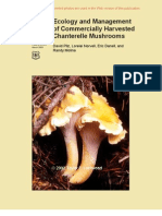 of Commercially Harvested  Chanterelle Mushrooms