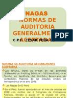 Diapositivas Nagas Prof Pena