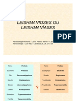 Leishmanioses Ou LeishmanÍases