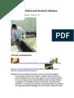 Tehnologia Fabricarii Branzei Telemea