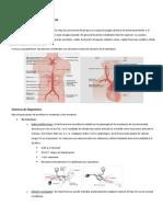 Fisiopatologia Arterial