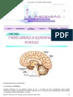Cura e Ascensão - TUDO SOBRE A GLÂNDULA PINEAL.pdf